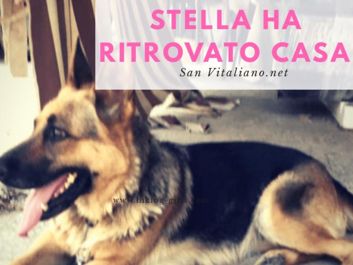 San Vitaliano, Stella ritrova casa
