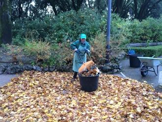 San Vitaliano, pulizia dei giardini e terreni privati: avviati i primi controlli!