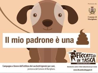 San Vitaliano, avviata la campagna di sensibilizzazione: raccogli i bisogni del tuo cane !
