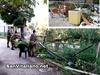 San Vitaliano, operazione tra Polizia Locale, Carabinieri e Militari: stop a occupazione abusiva