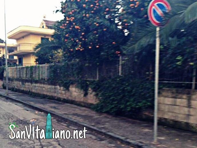 San Vitaliano, elevate le prime multe per sosta vietata
