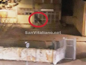 San Vitaliano, la segnalazione: ragazzini di sera nel parcheggio della scuola. Ma perchè?