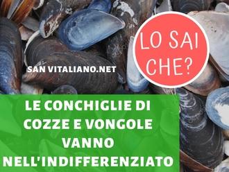 San Vitaliano, dove si gettano i gusci di cozze e vongole?