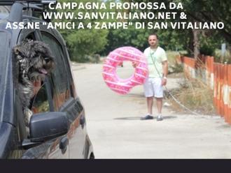 San Vitaliano, al via la nostra campagna contro l