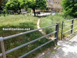San Vitaliano, rendiamo questo sentiero percorribile: a chiederlo è un 17enne per suo fratello
