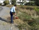 San Vitaliano, ricordi di pulire il tuo giardino e terreno? Lo impone una ordinanza del Sindaco!