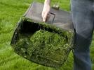 San Vitaliano, Recupero raccolta sfalci di potatura ed erba tagliata: si cacciano domani!