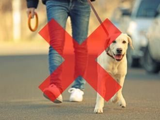 Coronavirus, ATTENZIONE: NO alle passeggiate col cane! Ecco il nuovo provvedimento cosa invece permette..