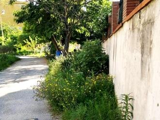 San Vitaliano, erba alta ed incolta: la segnalazione