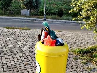San Vitaliano, cercasi senso civico: cestino per i cani riempito di rifiuti urbani