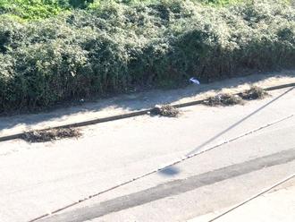 San Vitaliano, ripuliti i marciapiedi che portano alla Stazione ( anche via S. Francesco)