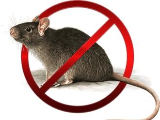 San Vitaliano, trattamento anti Ratti previsto per martedì 31 agosto